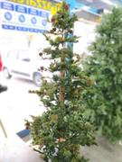 ALBERO NATALE MICHIGAN FIR WOOD CM.210 TRONCO CON PIGNE