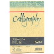 BUSTE CALLIGRAPHY 12X18 PZ.25 GR.90 ORO 03